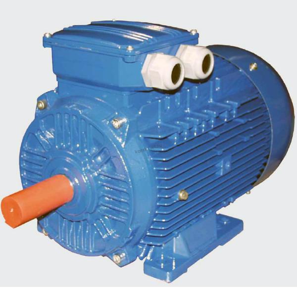 Электродвигатель 5АМХ180S2 22 кВт 3000 об/мин IM1081 ВЭМЗ