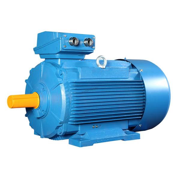 Электродвигатель АИР160M2 18,5 кВт 3000 об/мин IM1081